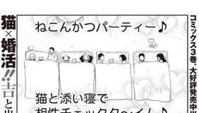 [第23話] ねこぐるい 美奈子さん